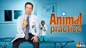 copyright-dismiss-prejudice-lawsuit-tv-show-animal-practice-nbc-duckhole.jpg