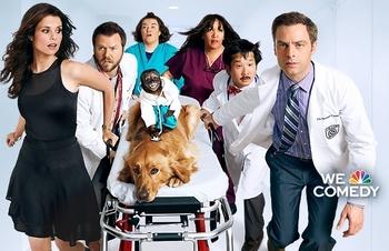 copyright-infringement-script-tv-show-animal-practice-nbc.jpg